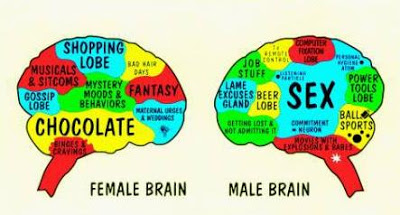 Image result for brain compared to mind